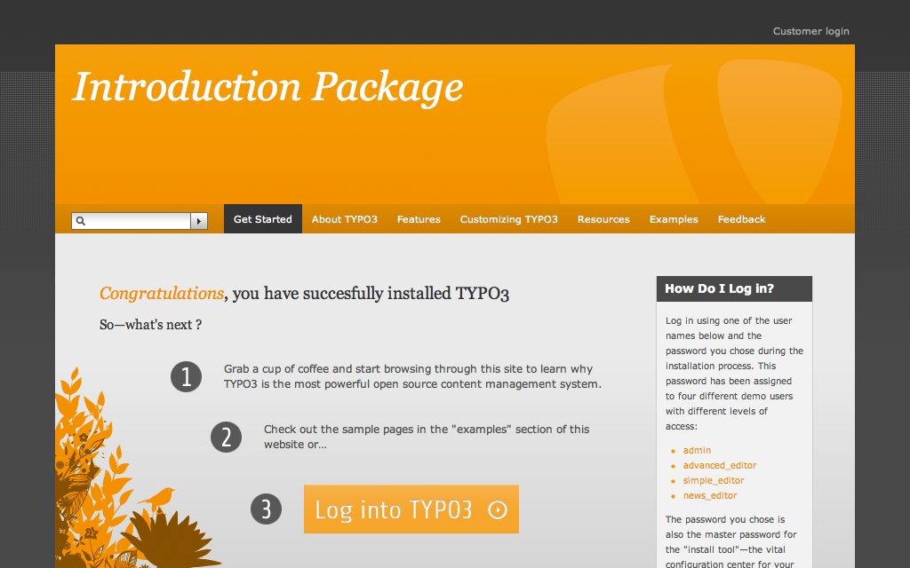 ss1_typo3.png